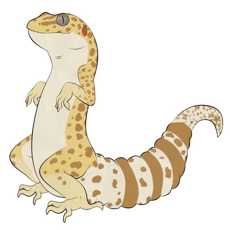 Name:  geckomugtemper.jpg Views: 204 Size:  97.7 KB