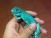 blue_iguana.jpg